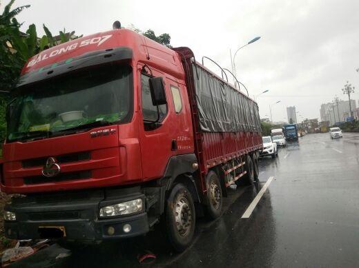 东风乘龙 载货车  270匹 2010年10月 8x4