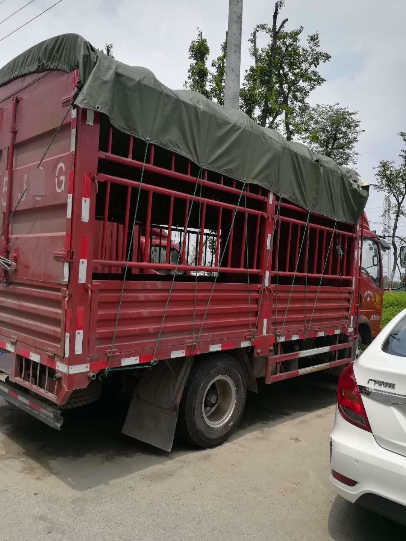 中国重汽HOWO 载货车  154匹 2017年04月 4x2
