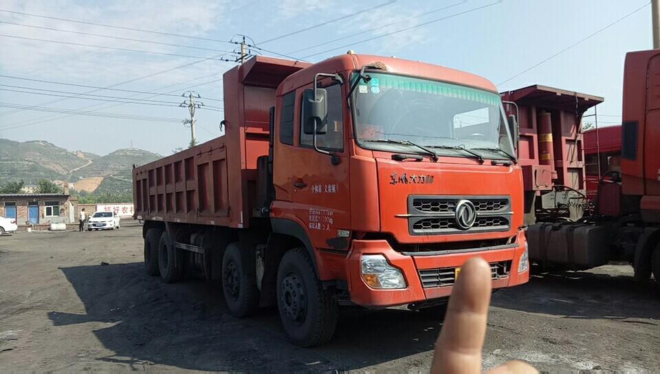 东风大力神 自卸车  260匹 2010年11月 8x4
